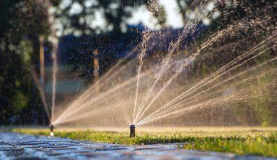 So planen Sie die Gartenbewässerung